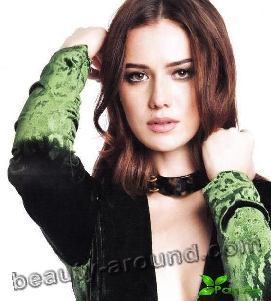 Fahriye Evcen Wren photo