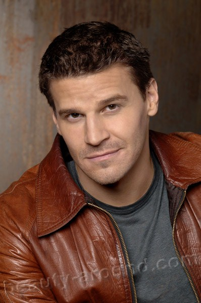 David Patrick Boreanaz  most beautiful American actor photos