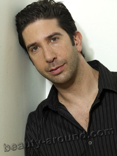 Handsome Jewish Men. David Schwimmer