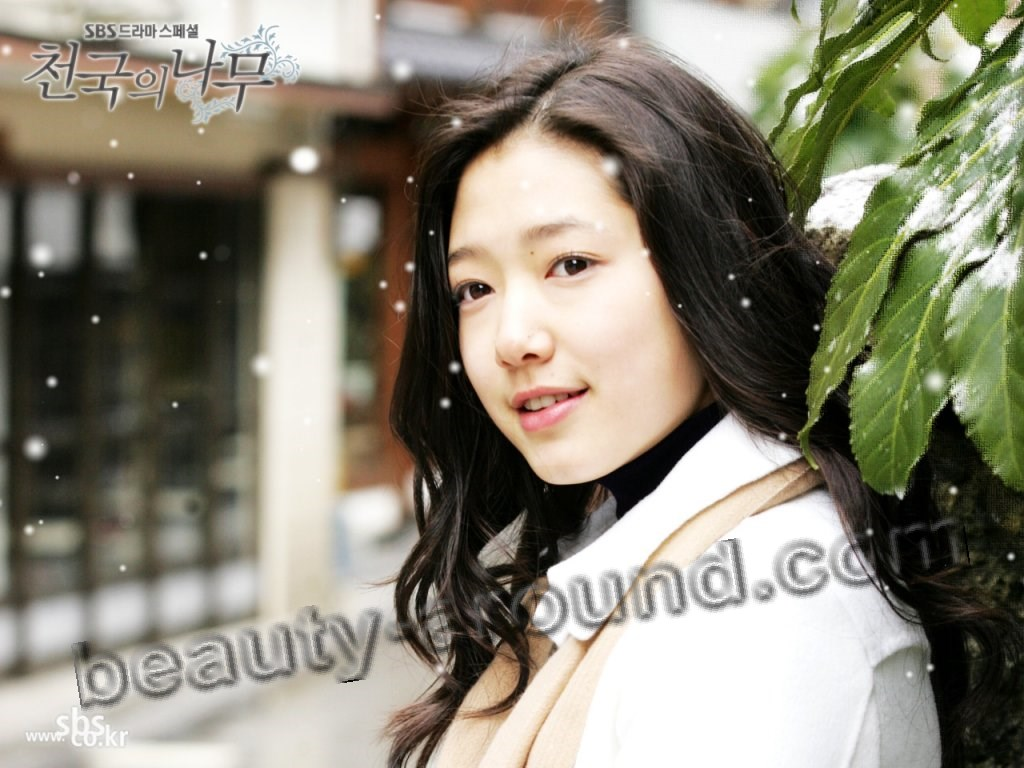 Park Shin Hye dorama photo