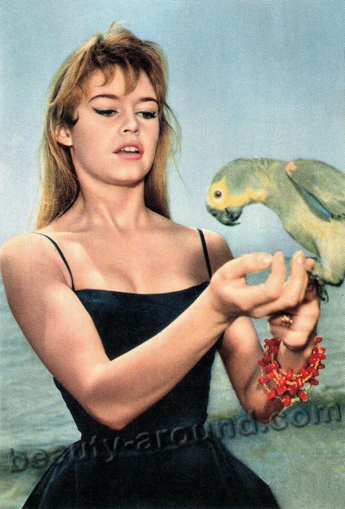 Брижит Бардо / Brigitte Bardot французская актриса в стиле пин-ап фото