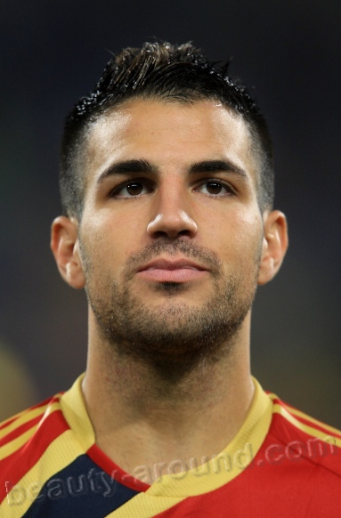 Handsome Male Athletes Francesc Cesc Fabregas i Soler