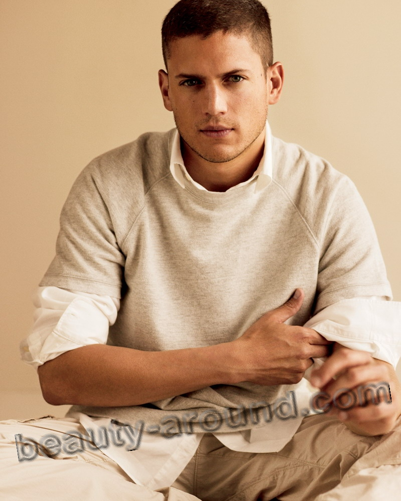 Wentworth Miller TV series actor photo