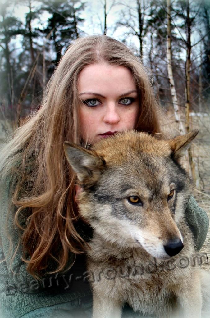 Девушка и волкособ фото