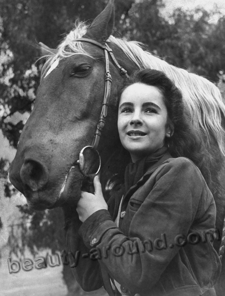actress Elizabeth Taylor photo with horse