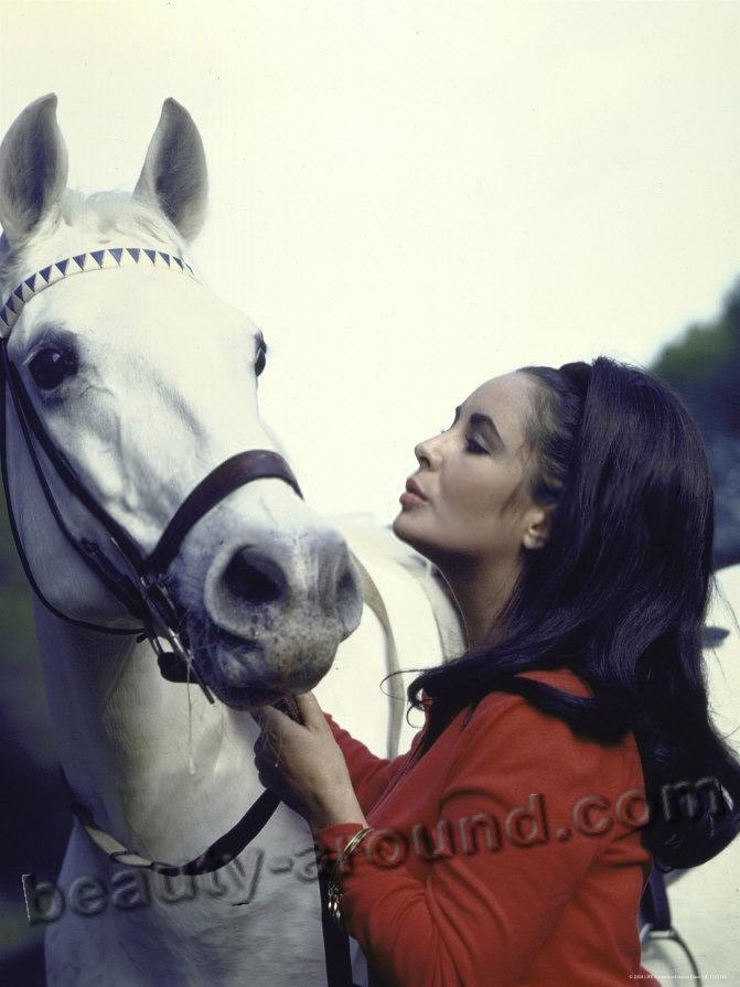 actress Elizabeth Taylor kiss horse photos