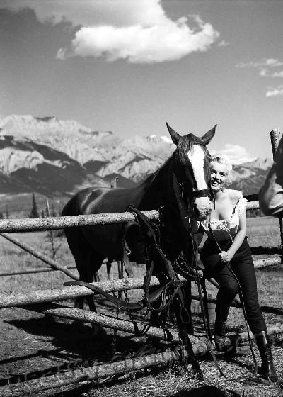 Marilyn Monroe with horse photos
