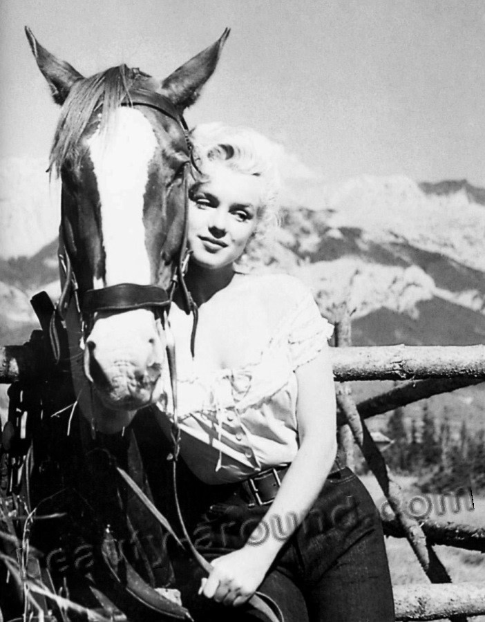 Marilyn Monroe near horse photos