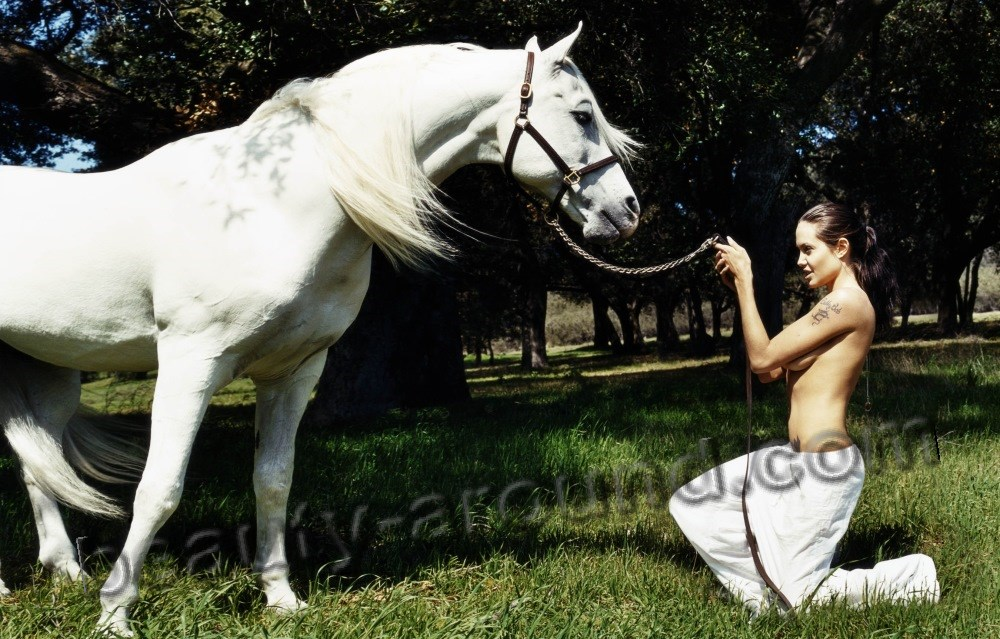 Angelina Jolie with white horse photos